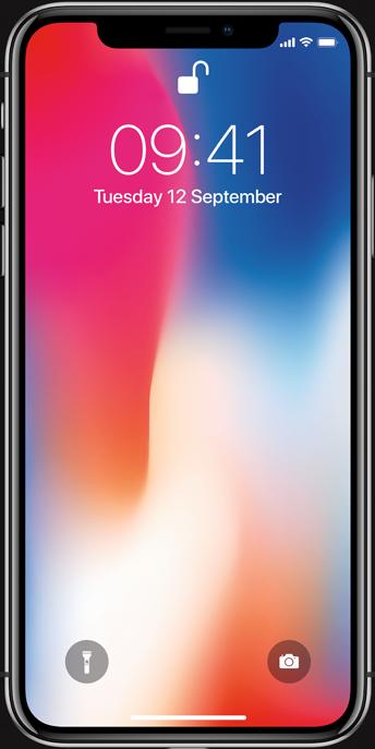 iPhoneX Grå